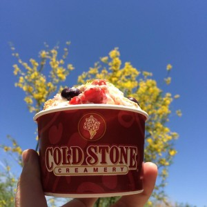 5 Reasons Why Going to Cold Stone Creamery Is Worth It by coldstonesouthflorida.com